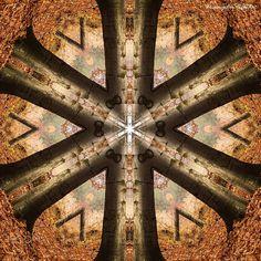Kaleidoscope of Nature I - null