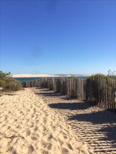 La dune du Pilat vue depuis la pointe du Cap Ferret... magnifique.