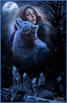 Картинки по запросу Волк в ночном лесу