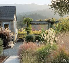 A Napa Valley Residence With a Strong Outdoor Connection