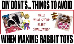 But, stay safe. Here are some toys to AVOID! DIY don'ts…things to avoid when making rabbit toys. Diy Bunny Toys, Diy Toys, Rabbit Crafts, Rabbit Toys, Rabbit Habitat, Rabbit Accessories, Mini Lop, Diy Stuffed Animals, Childhood