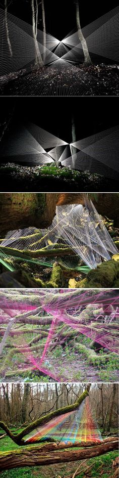 In the future all the spiders are hopped up on acid and skittles