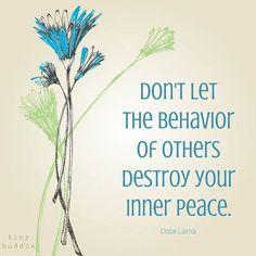#tinybuddha #dalailama #quotes #positivevibes #positivity #inspiration #motivation #positivevibesonly #positivityquotes #inspirationalquotes #motivationalquotes #dont #let #the #behaviourofothers #destroy #your #innerpeace #becalm #beyourself #listentoyourheart #followyourheart #bekind #bewise #bestrong #believe #havefaith