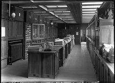 Botany Herbarium specimens by The Field Museum Library, via Flickr