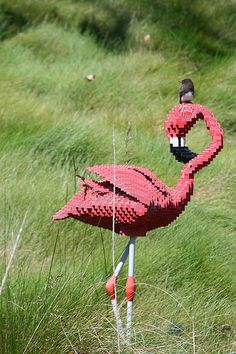 TEXT-MODE — Lego flamingos from here and there and everywhere.