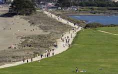 The Golden Gate Promenade, filled with pedestrians and cyclists, running alongside grassy Crissy Field and Crissy Marsh on one side and the shore of the bay on the other.