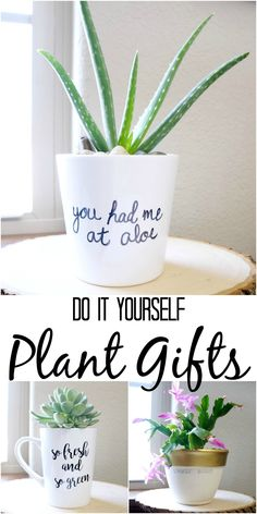 Simple DIY Plant gifts. Plant puns and pretty idea for potted plants