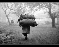 Μεγάλοι Φωτογράφοι – Κώστας Μπαλάφας. Ο φωτογράφος που απαθανάτισε το Ελληνικό παρελθόν | Consider... Old Photographs, Greece, God, Country, Greece Country, Dios, Rural Area, Praise God, Country Music