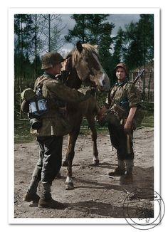 SS-Kavallerie-Ersatz Abteilung