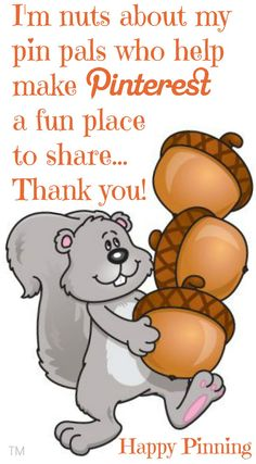 I'm nuts about my pin pals <3 No Pin Limits on my Pinterest boards <3 Tam <3