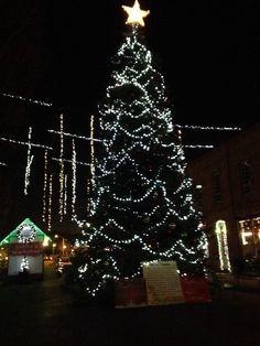Christmas Tree 2015 - Grants Pass, Oregon