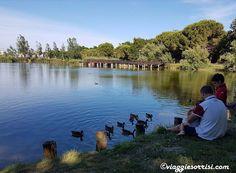 #BellariaIgeaMarina Parco del Gelso