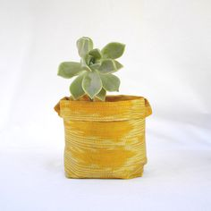 Sculpted Fabric Bowl for Plants.
