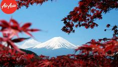 The panoramic view of Mount Fuji, just look at that icy cap atop the magnificent mountain!