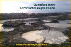 Impact dramatique de l'extraction illégale d'ambre en Ukraine Ukraine, Extraction, Ambre, Chakras, Html, Water, Outdoor, Environmental Issues, Natural Crystals