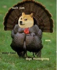 Doge Meme Dog Memes