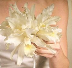 White orchids & lily of the Valley bouquet