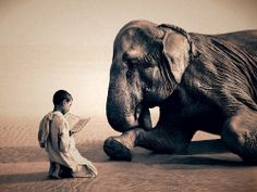 """坂井直樹の""""デザインの深読み"""": 詩的な感性と、それに反して危険な動物や子供などとの撮影は、謎に満ちていて不思議な異次元の感覚に襲われる。"""