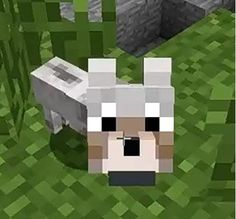 Baby wolf from minecraft! Minecraft Dogs, Minecraft Images, Minecraft Sword, Capas Minecraft, Minecraft Skins Aesthetic, Really Fun Games, Baby Wolves, Wolf Images, Dog Wallpaper