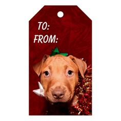 Helpful puppy Christmas Pack Of Gift Tags Red Pitbull, Pitbull Mix Puppies, Christmas Gift Tags, Holiday Gifts, Christmas Holidays, Christmas Puppy, Christmas Activities, Cute Dogs, Wrapping