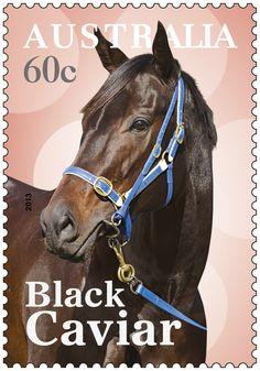 Postage stamp : Australia's own champion racehorse Black Caviar.