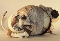 Crâne-trophée (c) D. Rapaich - Ville de Lille