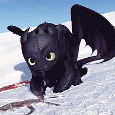 Toothless - one of the cutest and most loving things he ever did.