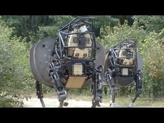 Robot Pets of the Future Could you ever love a... - SkepTV
