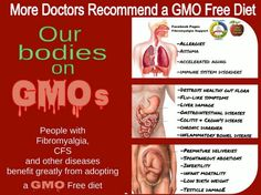 Smart Health Talk Pick: MDs recommend GMO free diet. Jeffrey Smith, Genetic Roulette, guest several times, has MDs coming up at speaking events on prescribing NON GMO diets to patients w/success. Nothing working to improvement after prescribing NON GMO diet. Keeps getting better over time. Convinced or why come? Video: http://www.youtube.com/watch?v=ICJxEsx57Dg Jeffrey joins celebration for Vermont GMO labeling bill win. Senate Jan 2014, then to governor, law, court. Monsanto said will sue.