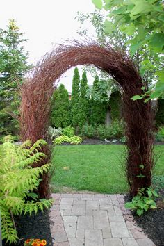 arbour made with live dogwood, cool (Diy Garden Arch)