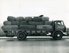 Bradford, Old Trucks, Transportation, Wool, Vehicles, Image, Car, Vehicle, Tools