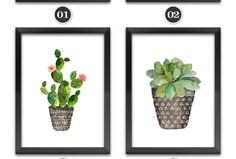 Aliexpress.com : Buy Nordic Watercolor succulent Green plant Canvas Art Print Poster, Cactus set Wall Paintings Modern Home Decor No Frame DP0091 from Reliable painting poster suppliers on Jolin Decor Painting Store