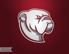 Bulldogs Logo on Behance