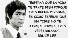 """Esperar que la vida te trate bien porque eres buena persona,es como esperar que un tigre no te ataque porque eres vegetariano """"Bruce Lee"""""""