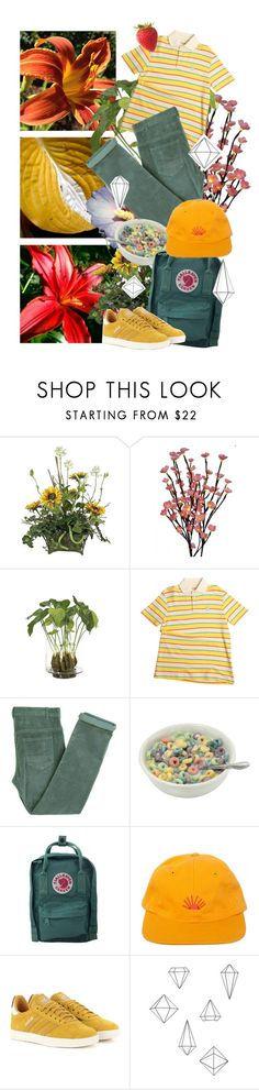 """""""SCUΜ FUCΚ FLOWER BOY"""" by kashmerenoose ❤ liked on Polyvore featuring Universal Lighting and Decor, NDI, Laurence Doligé, Fjällräven, adidas Originals, Umbra, men's fashion and menswear"""