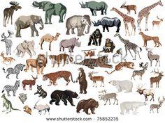 Animals Illustration 스톡 사진, 이미지 및 사진 | Shutterstock