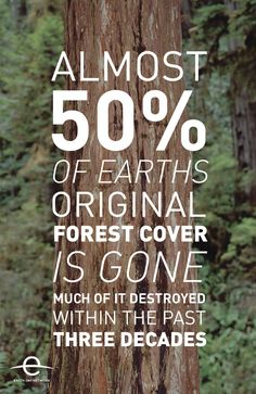 US Environmental Protection Agency; Earth Day Network This is NOT OK! Take a stand against deforestation!!!
