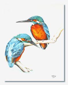 Watercolour HP 300gsm A present for my Mum - her favourite bird