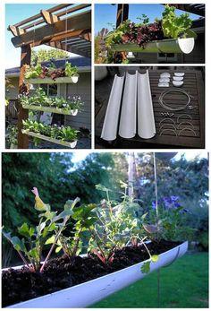 Verrückt: ein kleiner hängender Gemüsegarten in einer Dachrinne. :D #Blumenbeet #Garten #vertical #garden