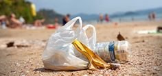 Humans Put 8 Million Metric Tons Of Plastic In The Oceans Each Year