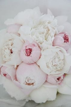 Gorgeous Peonies | Express Photos - http://dulichnhatrang.info.vn