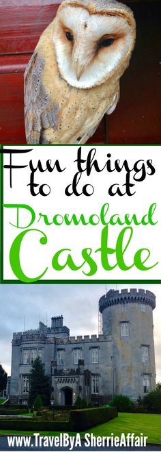 So much to do at the Dromoland Castle in Ireland! Lots of activities and exploring.  Golf, clay shooting, archery, falconry just to name a few!