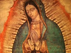 THE BLOOD AND THE ROSE: A Good News Movie Review about a film that documents the miracle of Our Lady of Guadalupe. Well done! The history and facts are incredible and the film is very complete. See http://gnmforum.blogspot.com/2014/01/the-blood-and-rose.html