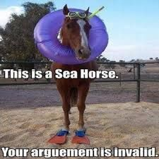 Image result for funny horse quotes