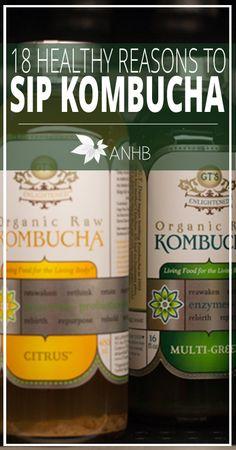 18 Healthy Reasons to Sip Kombucha - All Natural Home and Beauty #kombucha