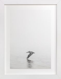 Pelican on Lake by Mary Ann Glynn-Tusa at minted.com