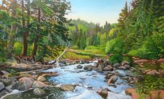 Off the Track & Tower Trail, Algonquin Park Algonquin Park, Amazing Paintings, Landscape Paintings, Landscapes, Oil Paintings, Canadian Artists, Painting Inspiration, Watercolor Art, Trail