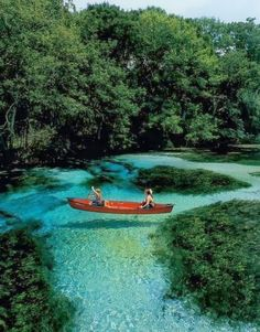 Slovenia. That would be amazing water to swim in!