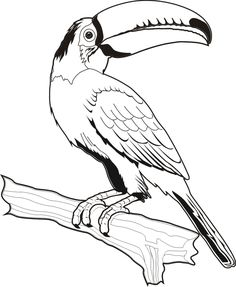 Blanco Designs                                                                                                                                                                                 Mais Bird Pencil Drawing, Bird Drawings, Line Drawing, Animal Drawings, Bird Coloring Pages, Coloring Books, Bird Outline, Watercolor Bird, Bird Art