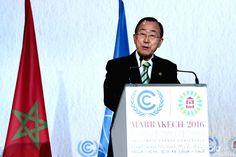 """Si è chiusa Sabato la #COP22 di Marrakech. Era stata da più parti definita come la """"COP delle attese"""": dopo l'entrata in vigore del Paris Climate Agreement a inizio novembre ci si augurava infatti che questa COP iniziasse a declinare concretamente questo accordo entrato in vigore in tempi record (dopo un solo anno rispetto … Un Climate Change Conference, Marrakech, Books, November, Libros, Book, Book Illustrations, Libri"""